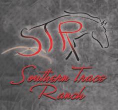 ST-full-logo